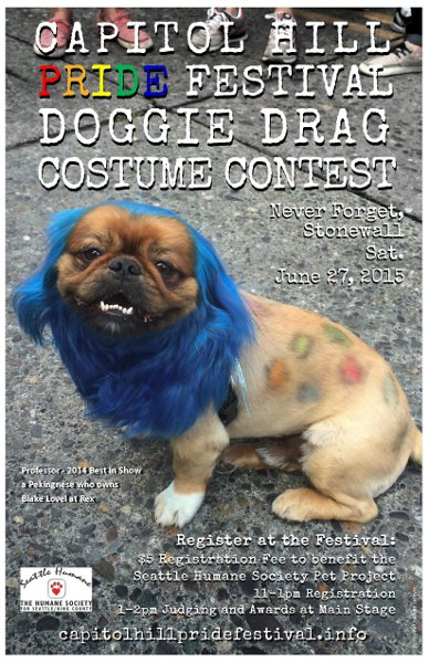 Doggie Drag Costume Contest